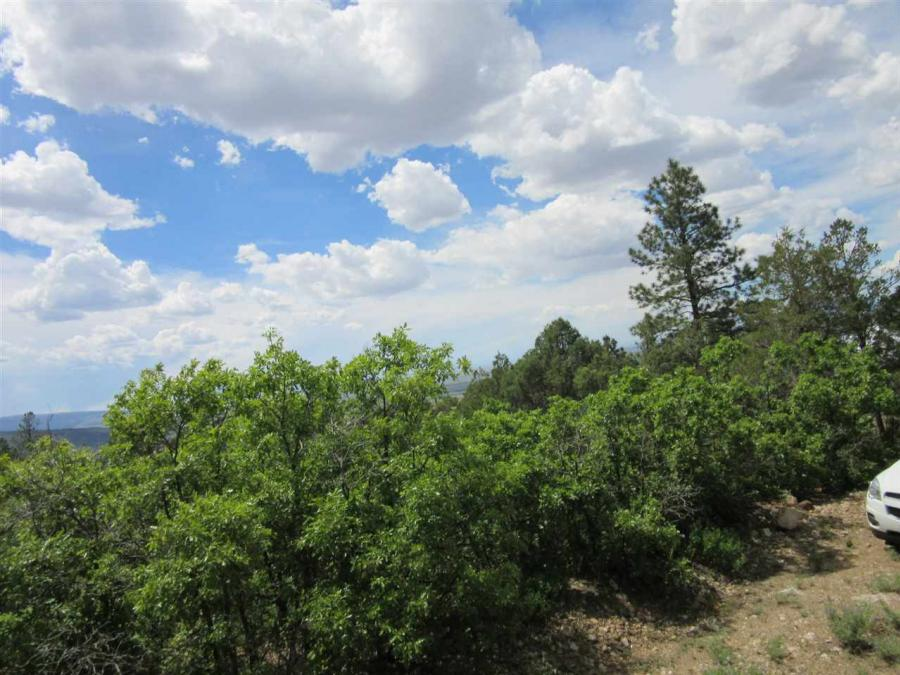 Echo Forest Road Questa, NM 87557